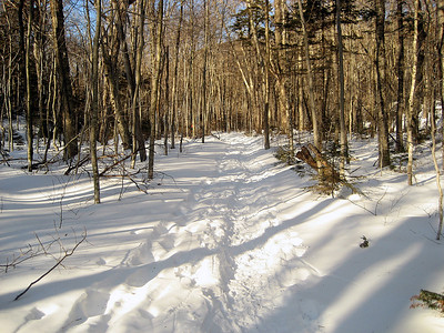 The sunshine made great shadows on the snow along the trail