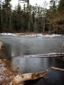 Frozen over beaver pond