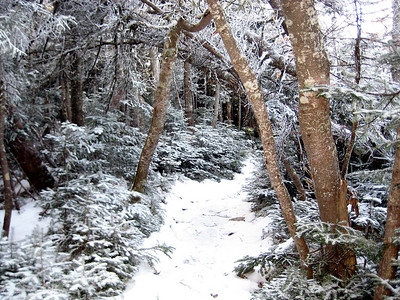 Only part of the trail that looked wintry