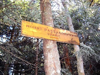 Right near the Passaconaway summit