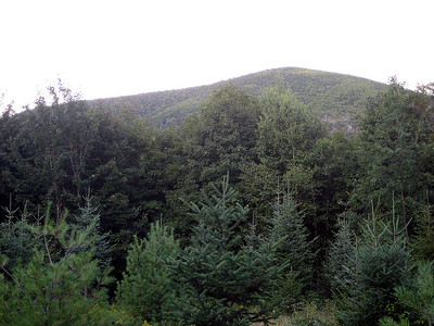 View of Flume Peak (the other one.)