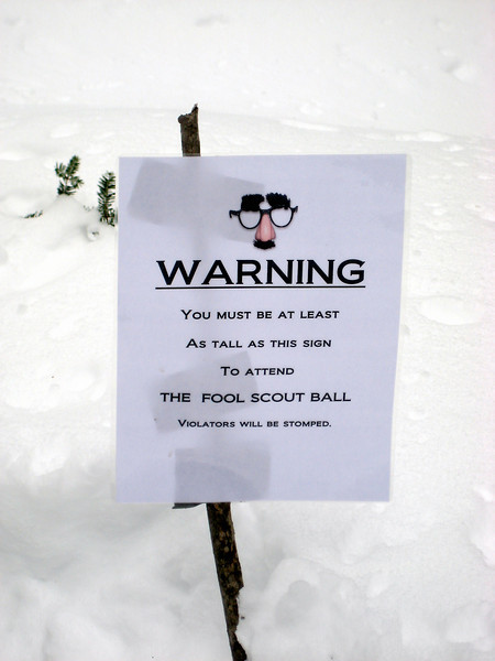 Fool Scout Ball 3