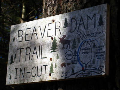 Neat sign for a short trail leading to an old beaver dam