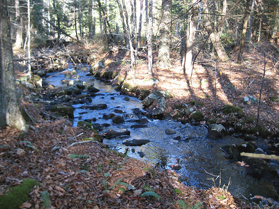 Tully Brook