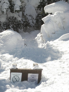 The sign at the Long Trail junction was nearly buried under 3+ feet of snow.