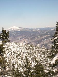 Mt. Mansfield from treeline