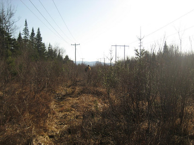 Our route brought us out to the powerlines, which was tough walking in shorts.... lots of briars.