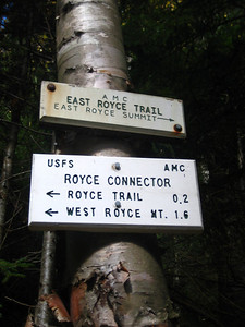 At the junction for East Royce