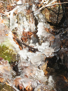 Ice in a little brook