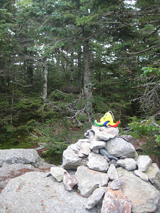 Rocky on his first visit to 4,003-foot Mt. Tecumseh