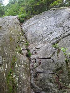 Rebar steps