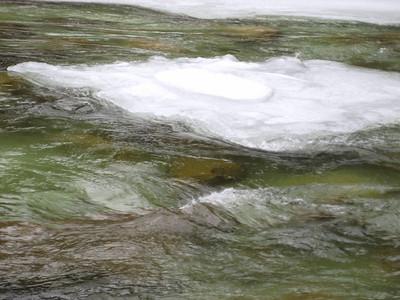 The river had a pretty green color.