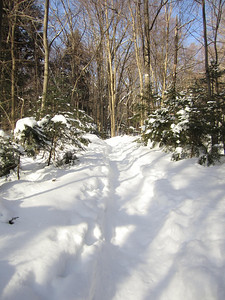 Broke trail through about an inch of powder... easy going.