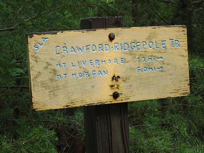 Atop Cotton Mountain and heading onto the Crawford-Ridgepole Trail