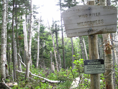 Wilderness means you'll be climbing around a lot of blowdowns!