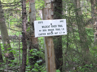 Now onto the Wildcat River Trail....