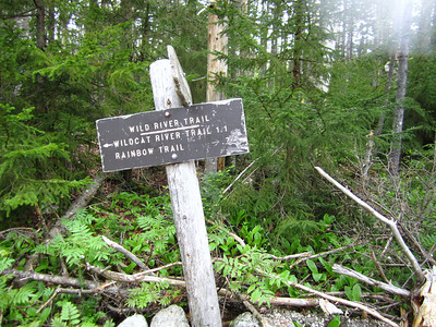 Onto the Wild River Trail (where strangely there is no river, but lots of bogs.)