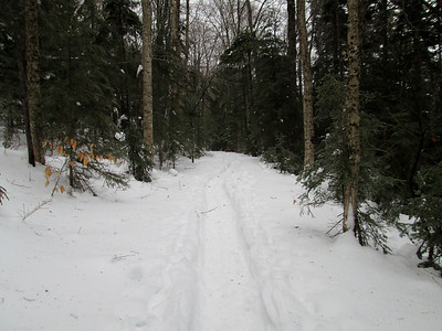 East Pond Trail snowshoe