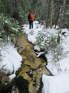 There were lots of slabs along this trail.