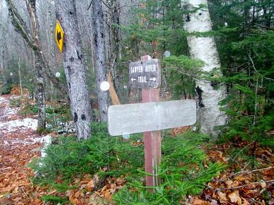Onto the Sawyer River Trail...