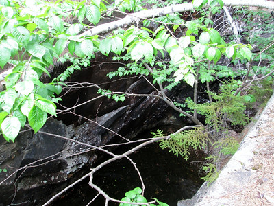 Terrible picture of a black fly and water filled pit at the iron mine