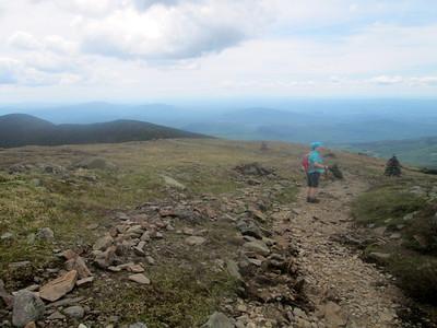 Poetree on the ridge