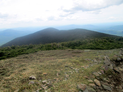 Moosilauke hike: June 8, 2014