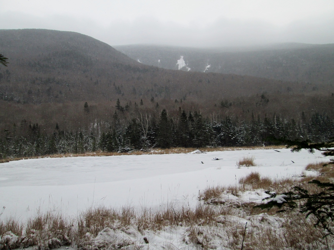 Moosilauke's South Peak is in the clouds behind Mud Pond