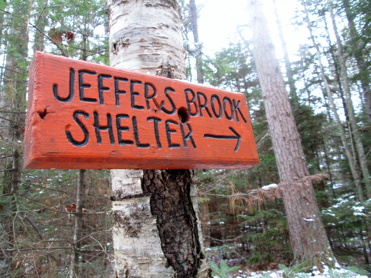 I wasn't sure if I visited the shelter the last time I hiked this section (10 years ago) so we made a quick visit.