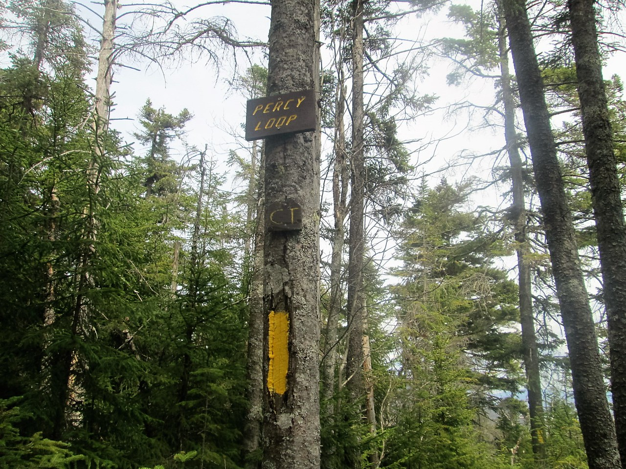 After a long ascent back up to the col, we finally reach the Percy Loop Trail