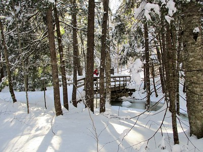 Bridge over frozen waters