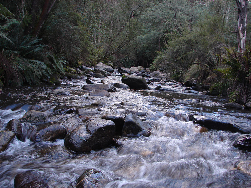 Mountain Creek, at the foot of Mount Bogong