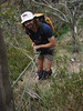 Rapelling off trees... (it is steeper than it looks here)