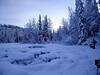 Wow...  Winter wonderland.
