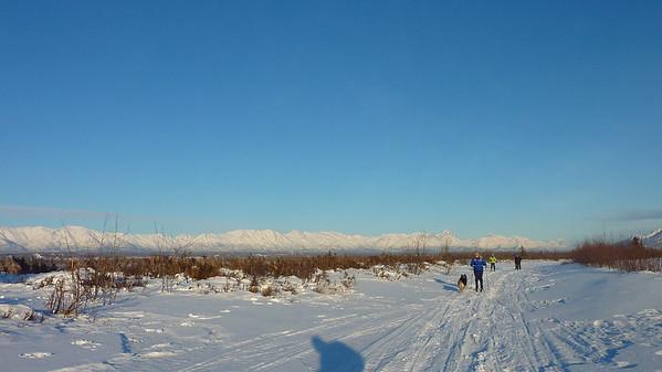 Palmer Hay Flats, 29 Jan 12