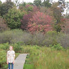 Cassie standing in front of the forest in the marsh.