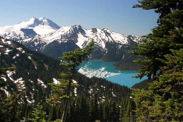 From the same point along the trail, only this time 180° in the other direction. The view of Garibaldi Lake, Mt Price and Mt Garibaldi is outstanding from this point onwards.