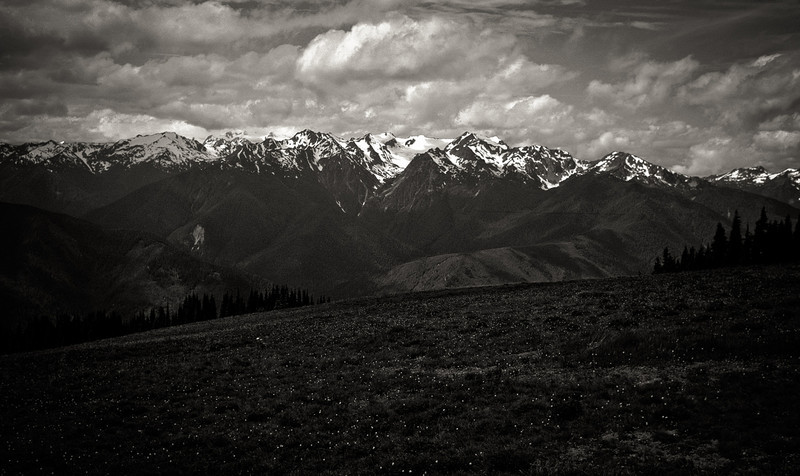 Olympics - Hurricane Ridge