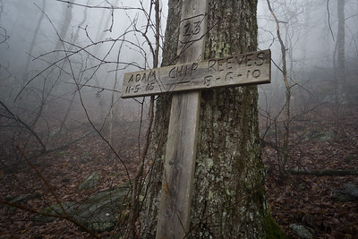 On a warm and foggy day in February, Renee and I decided to explore the trail.  We didn't take many pictures along the way because of the heavy fog.  We saw a wooden cross and wondered about the memorial.  Renee tracked it down  https://www.gainesvilletimes.com/news/helicopter-crash-in-lumpkin-kills-2/