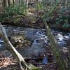 Cowrock Creek was full of water today.