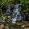 Located just above the Upper Falls, this cascade is the upper-most drop on the entire set of waterfalls on Chinquapin Branch.   Photo by Renee