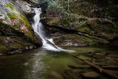 Darnell Creek
