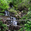 """It took some serious bushwhacking to reach this waterfall.  Estimates of the height were 35 - 50 feet.  Four, distinct drops; we settled on a name of """"Quartet Falls""""."""