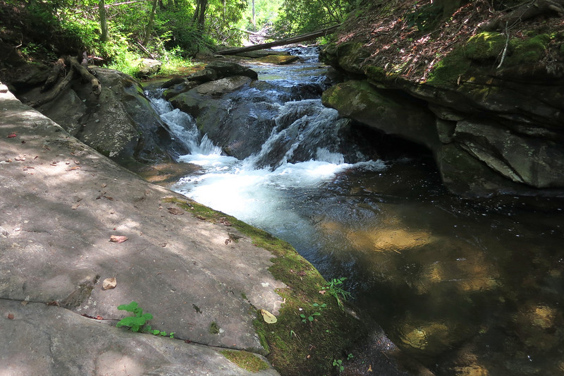 The road/trail alternates between being close to the creek and being not so close.  It is close here; good fishing hole?