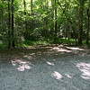 Through the trees, even in June, you should be able to make out a Wildlife Clearing  directly across Boggs Creek from where you parked.  Walk back down the road toward the way you drove in for 100-200 feet and turn left toward the creek at the first path.
