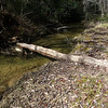 The old log crossing is getting smaller and smaller.  Used to be a lot higher and larger diameter.