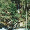 Tributary to Moccasin Creek; March 1998