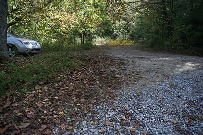 Hike to Shoals on Wild Hog Creek (Union County, GA)