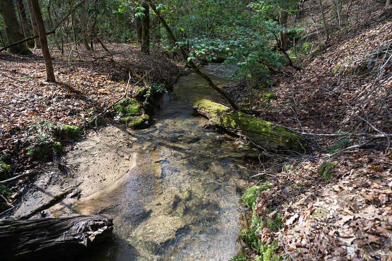 Another creek crossing.