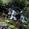 """Blow downs from recent tornado activity  blocks any creek-side route. There is a steep, """"cliffy"""" ridge that you have to climb up and over to get a round a lot of blow downs.  Here is some more shoals on what used to be a picturesque creek. (before the tornado)"""